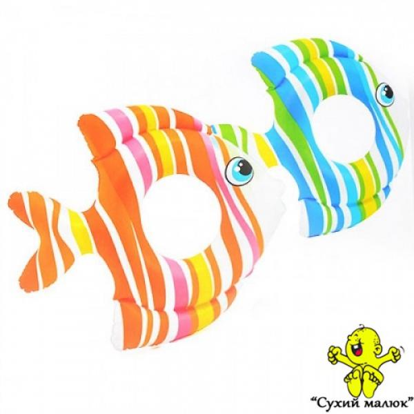 Коло 59223 Тропічні рибки, 83-81 см., 2 кольори, 3-6 років