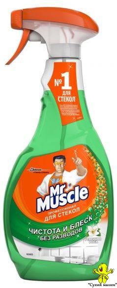 Засіб для миття скла Mr.Muscle Ранкова Роса (500мл.)